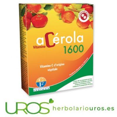 Acerola 600 mg Vitamina C dosis altas para tu sistema inmune Acerola pura 600 mg de extracto por cápsula de este remedio Vitamina C en dosis altas en comprimidos masticables para tus defensas
