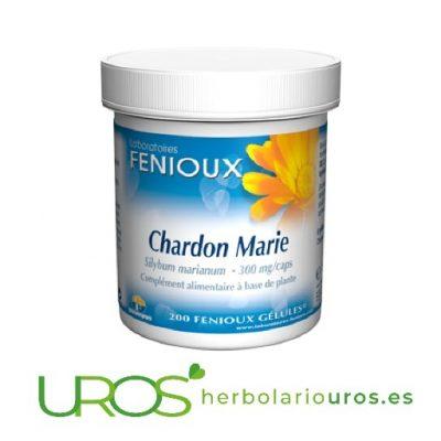 Cardo Mariano puro en cápsulas - ayuda para tu hígado Cardo mariano en cápsulas - remedio hepático natural Un aliado para ayudar a regenerar tu hígado - cardo mariano puro en cápsulas