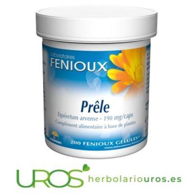 Cápsulas de cola de caballo puro Fenioux: para la retención de líquidos, cabello, uñas, articulaciones y cistits - La planta de Cola de Caballo pura en cápsulas: Tu diurético natural