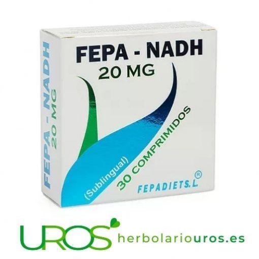 Fepa-NADH - energía para tus celulas - ¿Qué es el NADH? Fepa NADH - aporte para tu energía en casos de fatiga y cansacio Tu suplemento natural a base de NADH para tomrlo de manera sublingual - una ayuda para tu memoria y para tu sistema inmune - descubre los beneficios de NADH