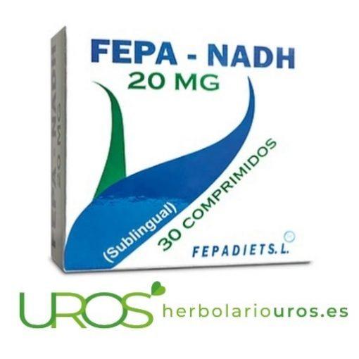 Fepa NADH - suplemento natural aprotando NADH para casos de fatiga, cansancio y para mejorar el funcionamiento cerebral