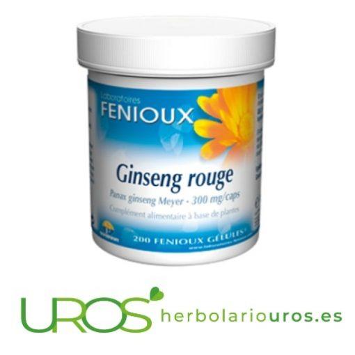Ginseng Rojo en cápsulas - para tu vitalidad y energía Ginseng Rojo en cápsulas de lab. naturales Fenioux Para poder rendir al máximo cápsulas de ginseng - energía que necesitas