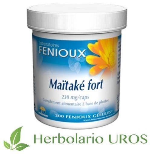 Maitake Fuerte Maitake Forte Hongo de Maitake Cápsulas de Maitake Propiedades de Maitake