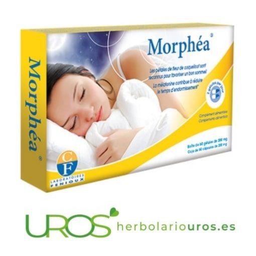 Morphea: Melatonina para dormir - ayuda en insomnio Remedio para el insomnio: Melatonina para dormir Tratamiento de insomnio - ¿Por qué no puedo dormir por las noches?