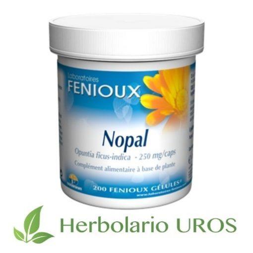 Nopal Nopal de Fenioux Nopal adelgazante Una ayuda para perder el peso Remedio para el sobrepeso Nopal oferta