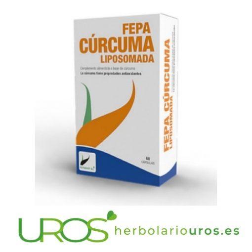 Fepa-cúrcuma liposomada - extracto de cúrcuma en cápsulas - la cúrcuma y sus propiedades - beneficios de la cúrcuma Fepa-cúrcuma liposomada en cápsulas - remedio natural antiinflamatorio Cápsulas de lab. FepaDiet con todas las propiedades curativas de la cúrcuma en forma liposomada