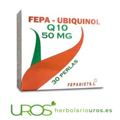 Fepa Ubiquinol Q10 : Coenzima Q10 pura en cápsulas - aporta energía, fomenta la recuperación muscular y cuida tu corazón.