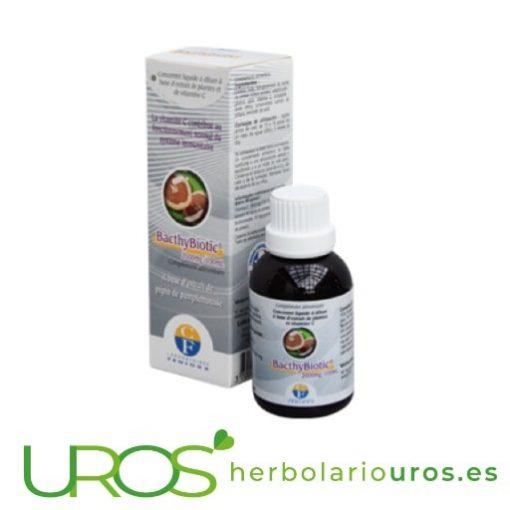 BacthyBiotic: Vitamina C + Extracto de pepita de pomelo BacthyBiotic de Fenioux - concentrado líquido de pepitas de pomelo Remedio con de Vitamina C en líquido - de extracto de pepita de pomelo