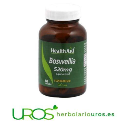 Boswelia de HealthAid - Boswellia Serrata pura en cápsulas Boswelia de HealthAid - ayuda natural para tus articulaciones Boswelia en extracto - Boswellia serrata en cápsulas en caso de dolores articulares