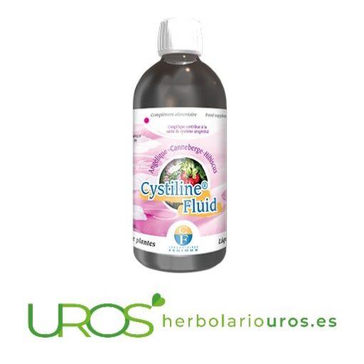 Cystiline Fluid de Fenioux: Ayuda natural en infecciones urinarias - ayuda natural en cisitits Cystiline Fluid de Fenioux - una ayuda para tu sistema urinario Una ayuda natural para las infecciones del sistema urinario y cisitis