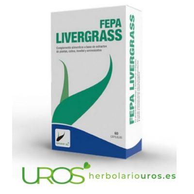 Fepa-Livergrass: Desintoxicante hepático natural y ayuda natural para tu digestión Fepa-Livergrass - una ayuda natural para tu hígado Fepa Livergrass es un desintoxicante hepático natural, rápido y efectivo - una ayuda natural para tu hígado y para acelerar su recuperación y regeneración