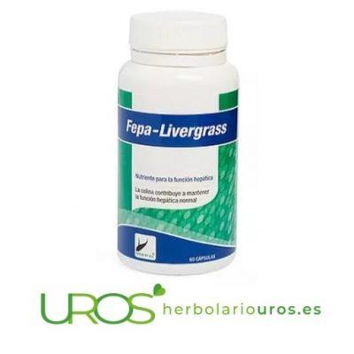 Fepa-Livergrass - remedio natural para tu hígado - Fepa Livergrass para regeneración hepática natural