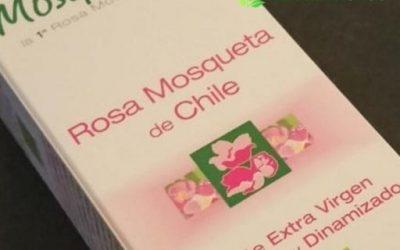 Rosa mosqueta Rosa Mosqueta pura