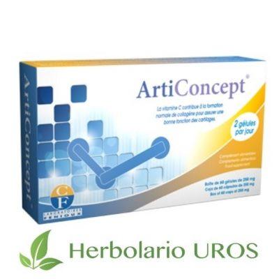 Articoncept Arti-concept arti concept arti concept fenioux articulaciones arti concept