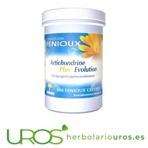 Artichondrine Plus Evolution Fenioux 480 cápsulas Artichondrine Plus Evolution - remedio articular natural en envase grande Cuidado de tus articulaciones - una ayuda natural y efectiva