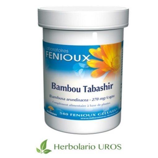 Bambú de Tabashir de Fenioux