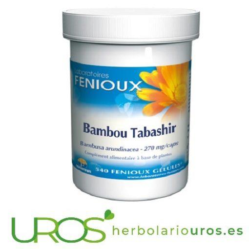 Bambú de Tabashir Fenioux 540 cápsulas Bambú de Tabashir Envase Grande de Bambú de Tabashir - 540 cápsulas - un aporte natural de silicio