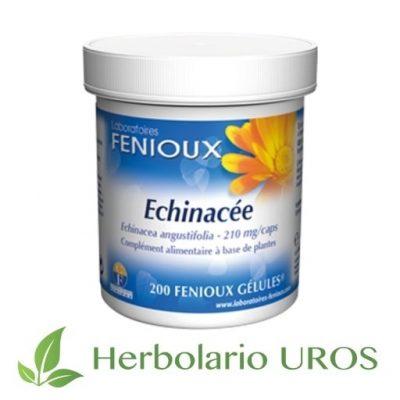 Echinacea Equinacea Echinácea angustifolia - Echinacea en cápsulas de Fenioux - Equinacia angustifolia pura para subir tus defensas