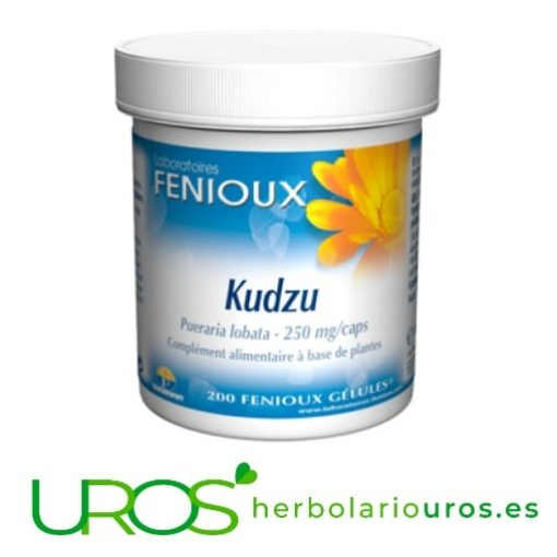 Kudzu Fenioux: Kudzu en cápsulas (Pueraria lobata) Kudzu puro en cápsulas - para tu flora intestinal y como antiinflamatorio Pueraria lobata - Kudzu en cápsulas de Fenioux - descubre todas sus propiedades