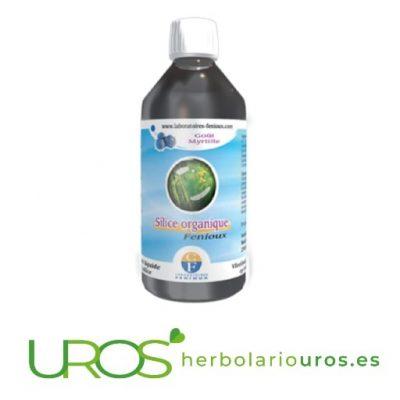 Silicio orgánico de Fenioux - silicio orgánico puro en líquido Silicio orgánico puro de laboratorios naturales Fenioux Silicio puro en forma líquida para ayudar a tus articulaciones, para tu sistema inmune y energía - descubre todas sus propiedades