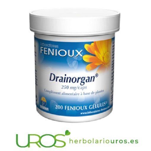 Drainorgan Fenioux: Un drenante natural Drainorgan de laboratorios naturales Fenioux - tu desintoxicante natural Para favorecer la eliminación de líquidos - Drainorgan de Fenioux
