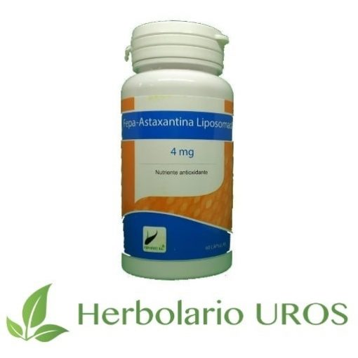 Astaxantina liposomada: Un antioxidante natural