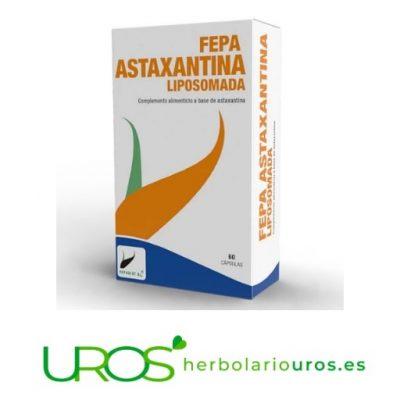 Astaxantina liposomada: tu antioxidante natural liposomal Fepa-Astaxantina liposomada en cápsulas - un potente antioxidante natural para mejorar tu piel, tu vista y tu salud celular Un antioxidante natural en cápsulas en forma liposomada para una mejor absorción