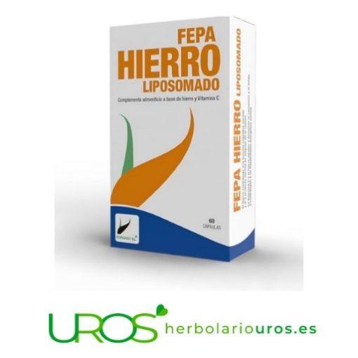 Hierro liposomado - Fepa-Hierro Liposomado (liposomal) Fepa-Hierro Liposomadoen cápsulas - para un aporte natural de hierro Hierro Liposomado de Fepadiet: Un suplemento que aporta hierro en forma liposomada