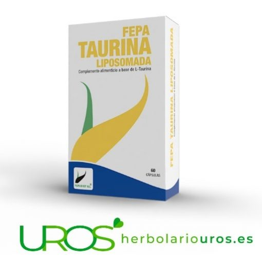 Taurina Liposomada pura: L-Taurina de elevada absorción Fepa-Taurina Liposomada - L-taurina en cápsulas en dosis elevada Cápsulas de L-taurina liposomada - para una mejor digestión