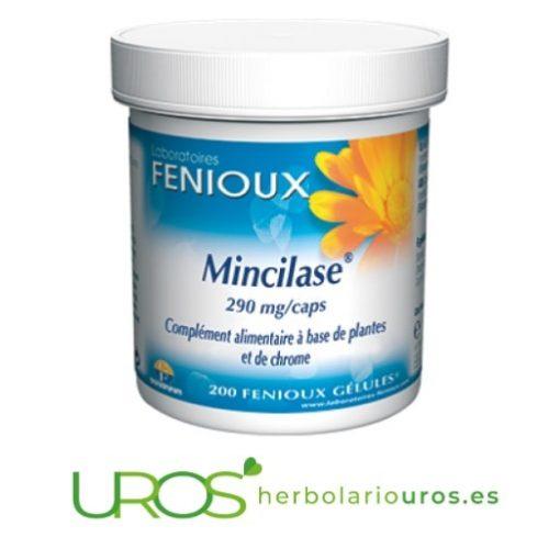 Mincilase de Fenioux - tu adelgazante completo Mincilase de laboratorios naturales Fenioux - adelgazante natural Una ayuda natural de laboratorios Fenioux para perder peso corporal