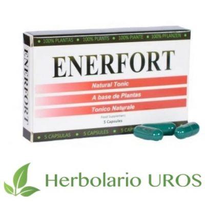 Enerfort Enerforte Estimulante sexual masculino Vigorizante sexual masculino Vida sexual Mejor sexualidad