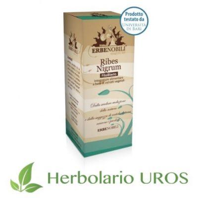Ribes nigrum de Erbenobili Suplemento espagirico Grosellero nergro