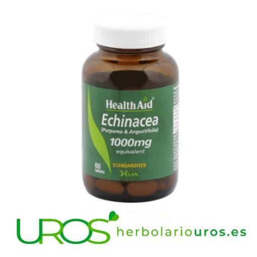 Equinácea en cápsulas de 1000 mg de lab. naturales Health Aid Combinación de Equináceas de 1000 mg de lab. naturales Health Aid Un suplemento para subir tus defensas de manera efectiva y natural - dosis elevada de 1000 mg de Echinácea