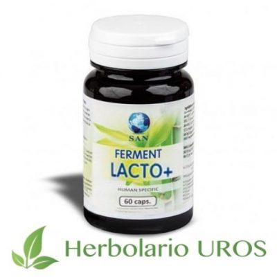 Ferment Lacto + 60 Ferment Lacto Plus 60