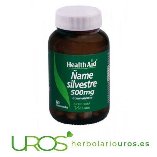 Ñame Silvestre HealthAid - 500 mg por cápsula -ayuda antiinflamatoria y contra los calambres La planta de Ñame - Dioscorea villosa en cápsulas en extracto Un complemento natural de lab. Health Aid para tu bienestar