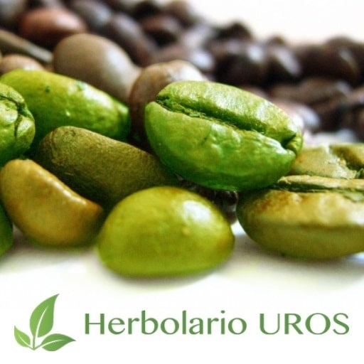 Café verde propiedades y beneficios
