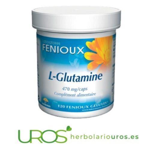 Glutamina Fenioux: beneficios tus para musculos y memoria Suplemento natural en cápsulas de laboratorios Fenioux:L-Glutamina en envase de 120 cápsulas Todas las propiedades y beneficios de la L-Glutamina - complemento alimenticio