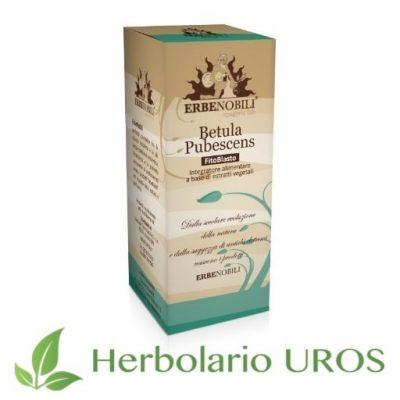 Betula Pubescens - abedul lanoso en tintura de laboratorios Erbenobili - un remedio espagírico desintoxicante, diurético y tonificante.