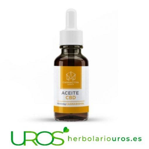 Aceite de semillas de cáñamo con CBD - Aceite de CBD Beneficios y propiedades de aceite CBD - cáñamo en aceite Aceite CBD funciona como un relajante natural, una ayuda para el insomnio y los dolores