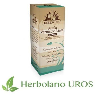 Betula Verrucosa Linfa - Abedul común en tintura espagírica de lab. Erbenobili
