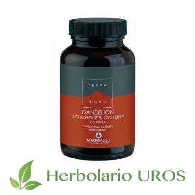 Diente de león en cápsulas de Terra nova - remedio desintoxicante, hepatico y digestivo natural