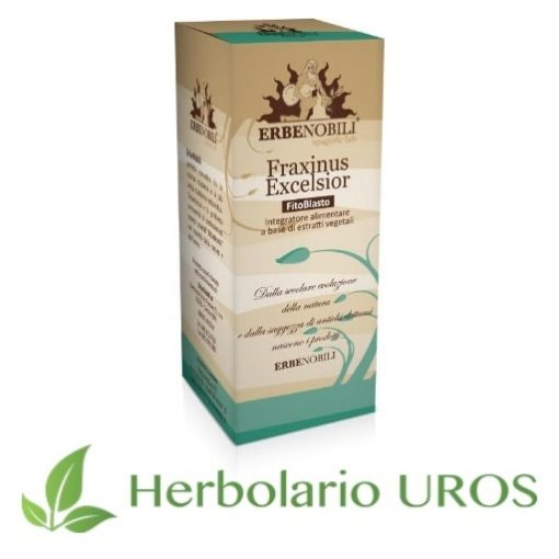 Fraxinus excelsior tintura espagírica de laboratorios Erbenobili para ayudar en casos de insuficiencia renal