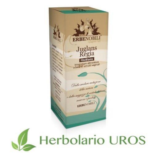 Juglans regia en tintura de laboratorios Erbenobili un antiinflamatorio y digestivo natural