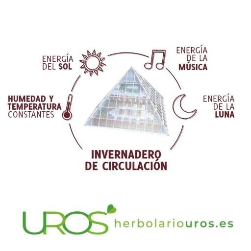 Espagíria - ¿Qué es y cómo funciona? Suplementos espagíricos