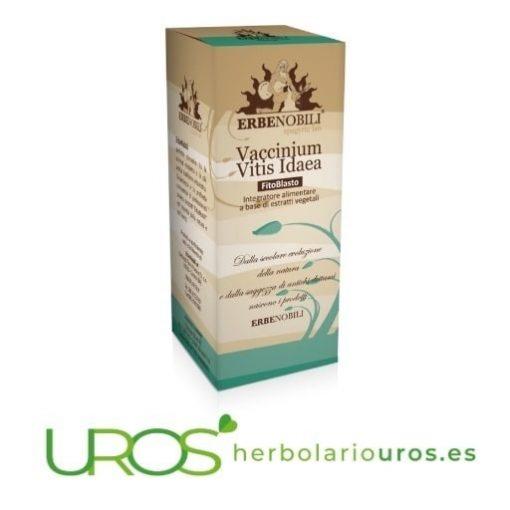 Vaccinium vitis Erbenobili Tintura espagírica a base de arándano rojo