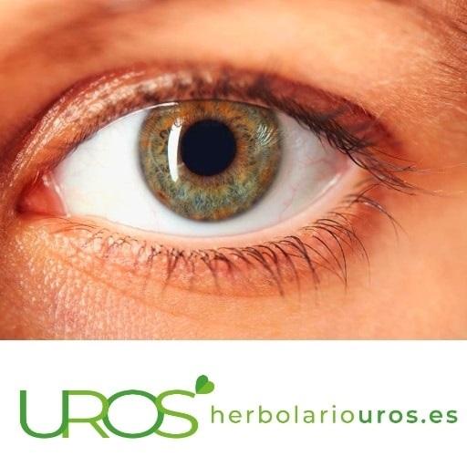 ¿Cómo mejorar la vista? - ¿Cómo cuidar la vista? ¿Cómo cuidar los ojos naturalmente? Consejos para mejorar y cuidar tu visión de manera natural