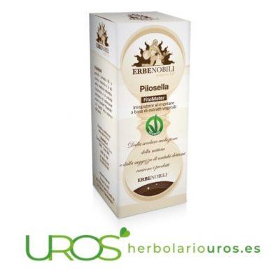 Pilosella en tintura de laboratorios Erbenobili - un remedio espagírico diurético