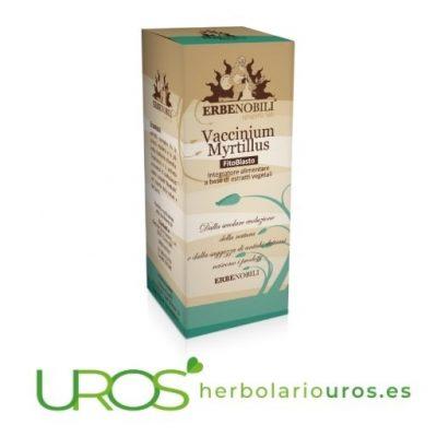 Vaccinium Myrtillus Erbenobili - tintura espagírica de arándano rojo puro