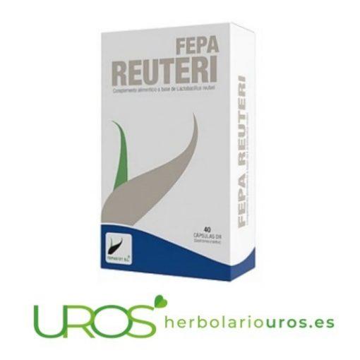 Fepa Reuteri - remedio natural para tu digestión Probiótico: Cepa de lactobacillus reuteri en dosis elevadas Probiótico en cápsulas para mejorar tu sistema digestivo naturalmente
