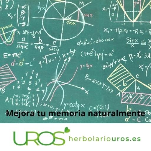 Pérdida de la memoria Pérdida de la memoria y los suplementos naturales